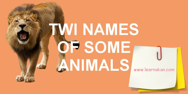 twi names of some animals