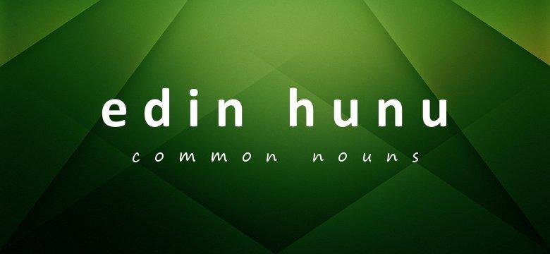 common nouns in twi