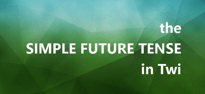 akan twi future tense
